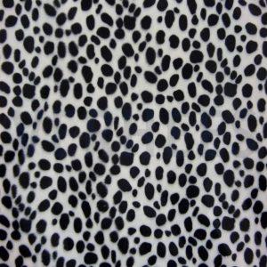 Velboa Dalmatier
