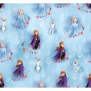 Frozen 2 met Anna en Elsa – lichtblauw